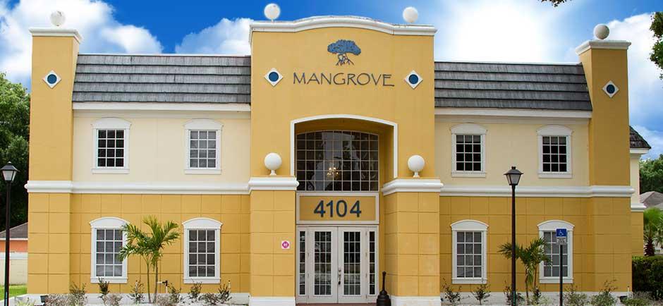 mangrove-commercial-construction-slide